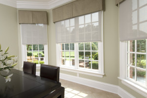 Lutron Dining Shades